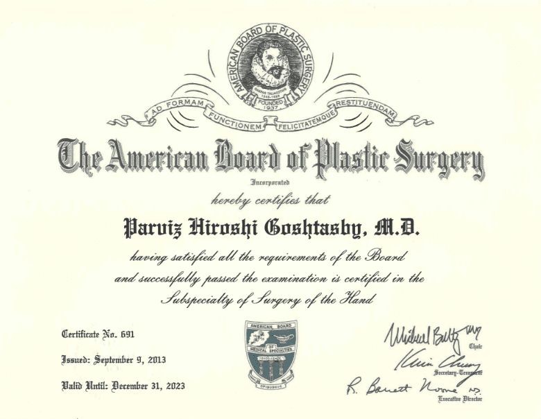 Meet Newport Plastic Surgeon Dr  Goshtasby | Newport Plastic
